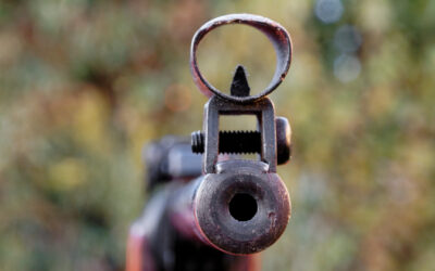 Air Weapons – The Law & Proposed Reforms