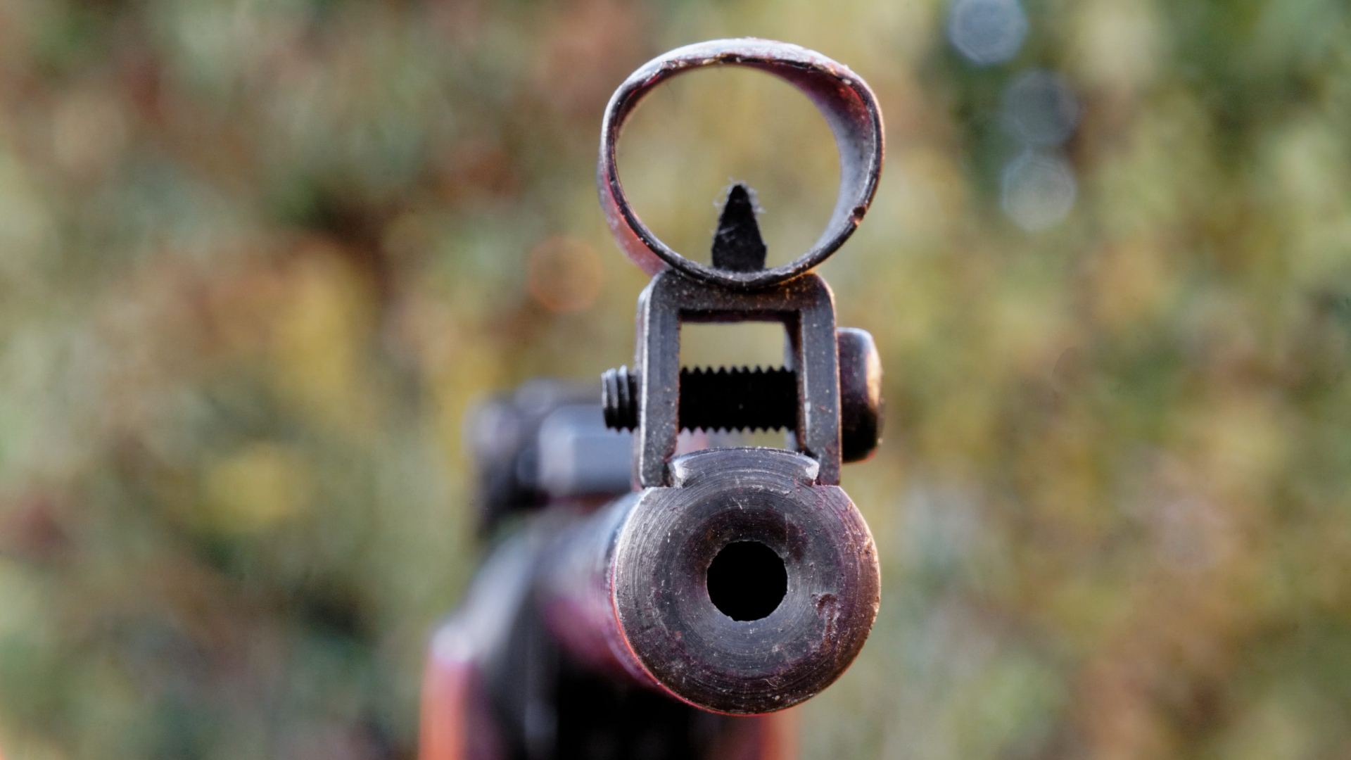 air weapons and the law