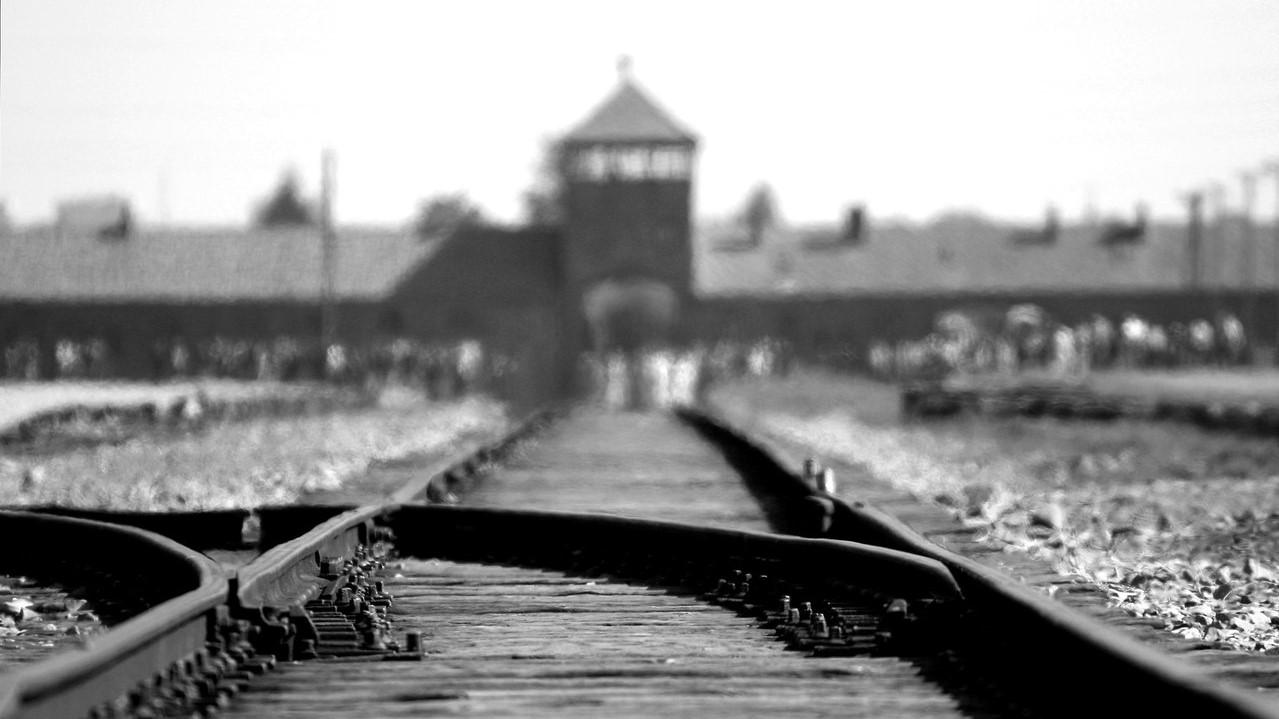 Is Holocaust Denial classed as hate speech